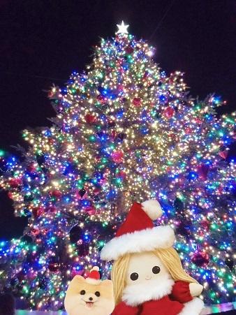 恵比寿ガーデンプレイス クリスマスツリーと