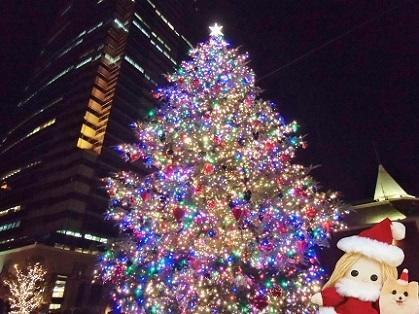 煌めくクリスマスツリー 恵比寿