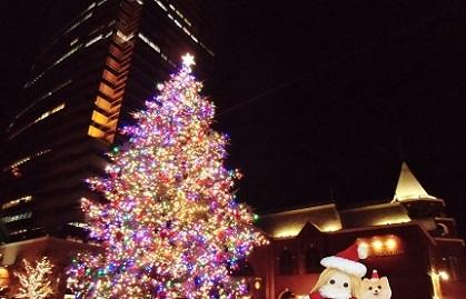 素敵なクリスマスツリー 恵比寿