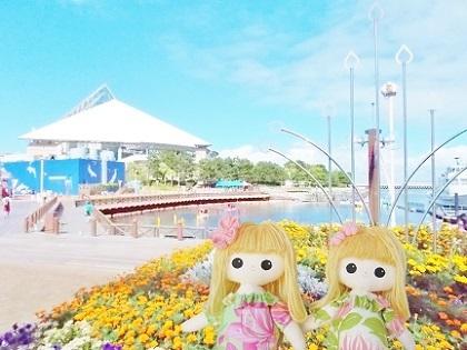 八景島シーパラダイスです2019
