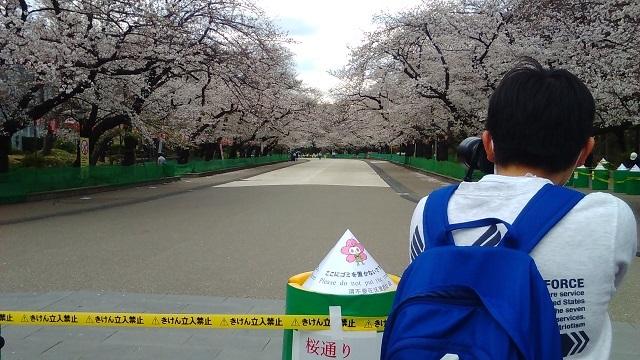 上野公園通行止め20200327