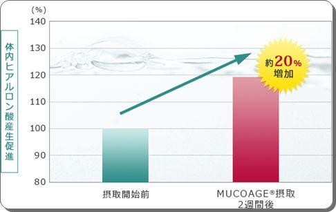 約2週間でヒアルロン酸が、20%増量↑潤い、自ら生み出すサプリ【MUCOAGE®・ムコアージュ】効果・口コミ。