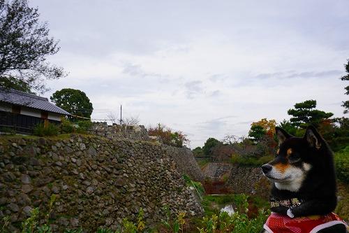 郡山城 (12)