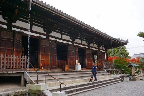 薬師寺 (13)