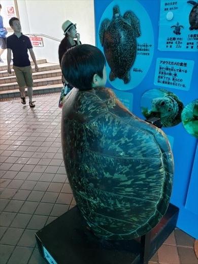 美ら海水族館 (37)