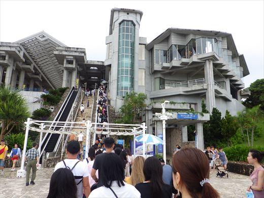 美ら海水族館 (48)