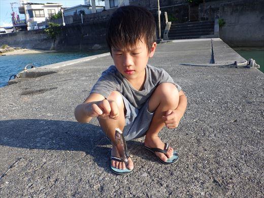 沖縄3日目 (9)_R