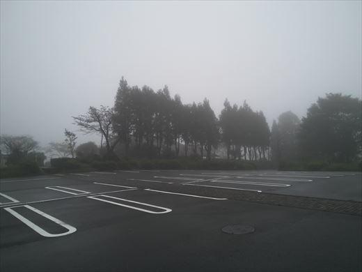 田貫湖キャンプ (38)