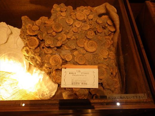 奇石博物館 (10)
