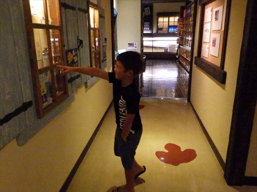 奇石博物館 (20)