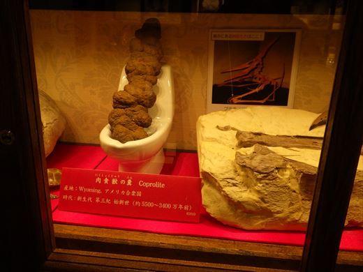 奇石博物館 (23)