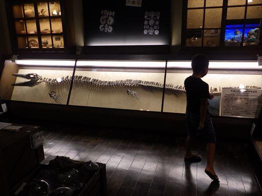 奇石博物館 (24)