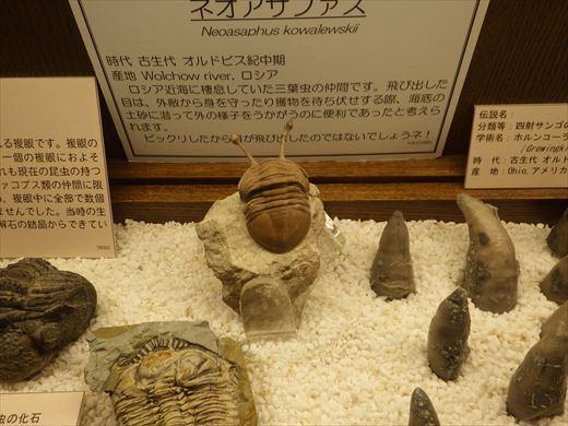 奇石博物館! (1)