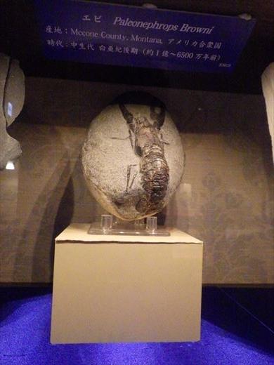 奇石博物館! (2)