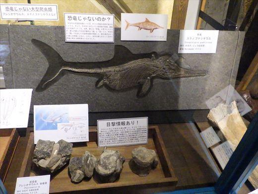奇石博物館 (25)