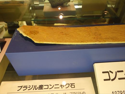 奇石博物館 (28)