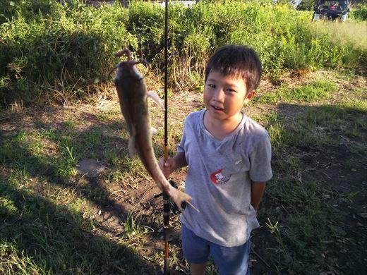 中川で釣る (12)