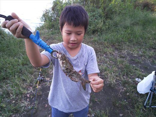 中川で釣る (13)