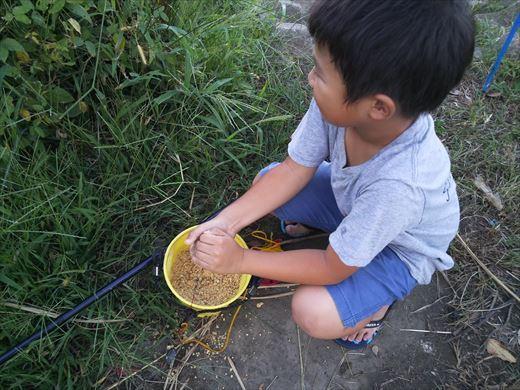 中川で釣る (15)