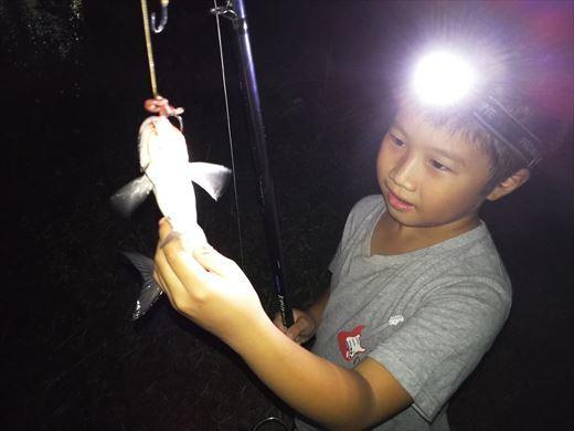 中川で釣る (22)
