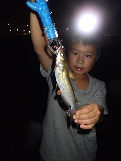 中川で釣り (3)