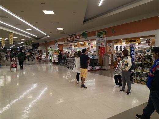 ジョイフル本田宇都宮店 (11)