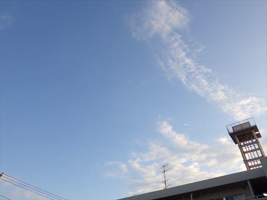 京葉スピードランド2019-11月 (2)