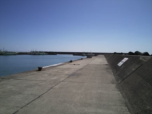 茅ヶ崎漁港 (8)