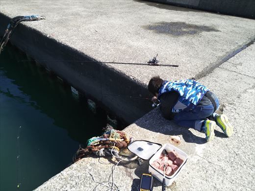 茅ヶ崎漁港 (13)
