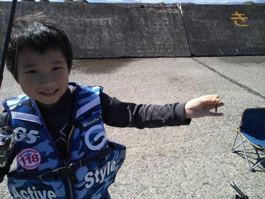 茅ヶ崎漁港 (14)