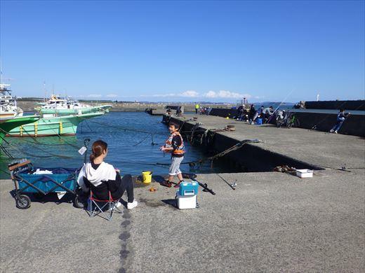 茅ヶ崎漁港 (23)
