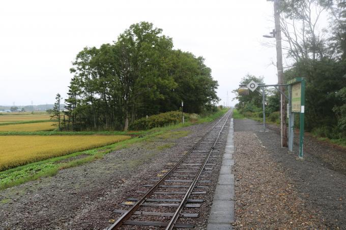 札沼線154