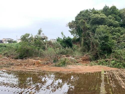 台風19号による被害状況 調査 18日 宇都宮市⑧