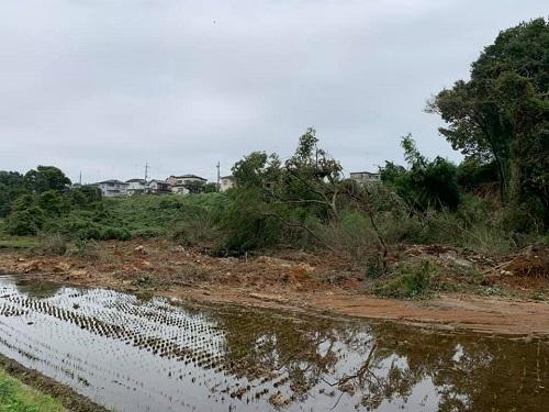 台風19号による被害状況 調査 18日 宇都宮市⑨