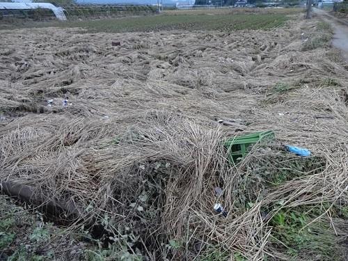台風19号による被害状況 調査 18日 佐野市⑦