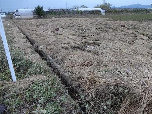 台風19号による被害状況 調査 18日 佐野市⑧