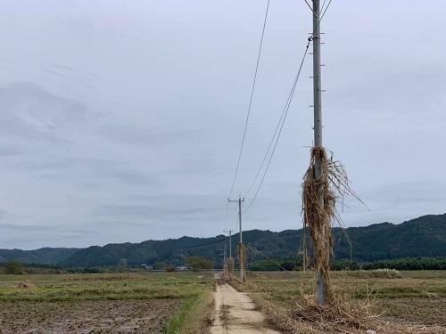 台風19号による被害状況 調査 21日/その1①