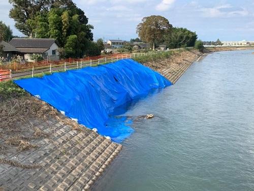 <令和元年 台風19号>による被害状況 現地調査(上三川町/田川)⑨