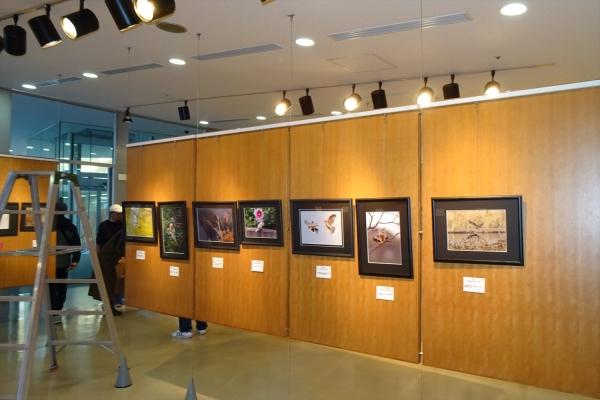 写真展20191102-6