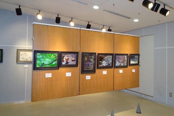 写真展20191102-3