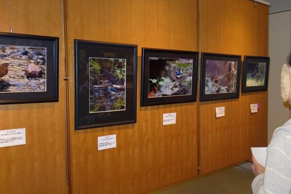 写真展20191102-8