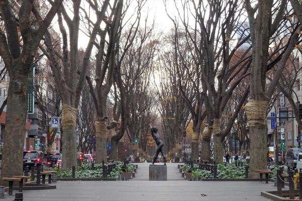 定禅寺通り20191207-2