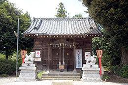 190724下谷氷川神社椎⑦