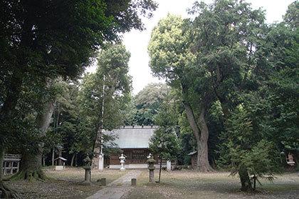 190827菖蒲町神明神社①