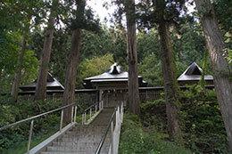 191006新宮熊野神社大銀杏⑧