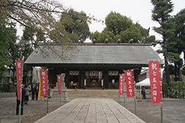 191019所沢神明社の欅⑦