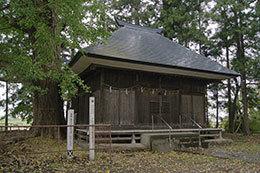 191029金川戸隠神社の大イチ