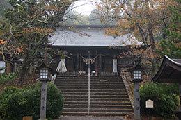 191030士津神社のハイマツ⑦