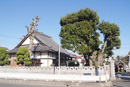 191204西福寺のタブ⑤