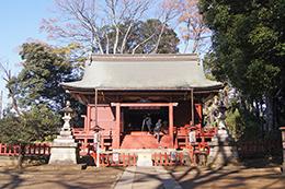 191212三芳野神社大楠⑪
